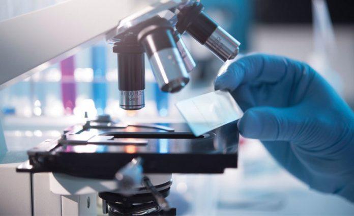 işçi sağlığı ve iş güvenliği analizleri gibi uygulaması ve raporlaması farklı uzmanlık gerektiren birçok kategoriden binlerce laboratuvar analizi, tüm bilgileriyle analizmarketi.com'da bir arada bulunuyor.