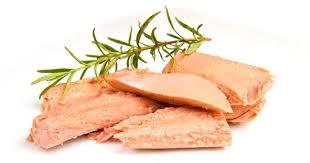 Uzman Diyetisyen Selahattin Dönmez yılın her mevsiminde sofraların Omega 3 kaynağı ton balığının anne ve bebek sağlığı için faydalarından bahsetti.