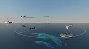 Promatech CEO'su Ahmet Bilici tur botları ile yapılan balina izleme turizmine her yıl 120 milyondan fazla katılım olduğunu ve bunun deniz memelilerinin doğal yaşam alanlarına müdahale anlamına geldiğini belirtiyor.